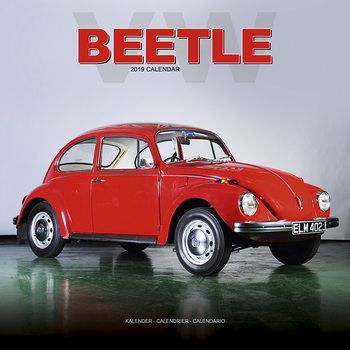 Calendar 2021 Beetle