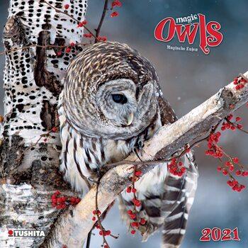 Calendar 2021 Magic Owls