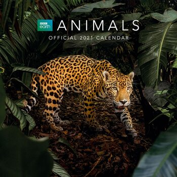 Calendar 2021 BBC Earth - Animals