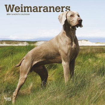 Calendar 2019  Braco de Weimar