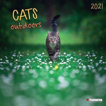 Calendar 2021 Cats Outdoors