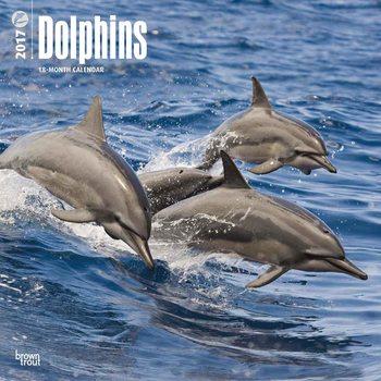Calendar 2017 Delfín