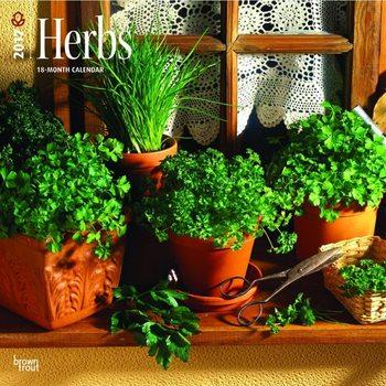 Calendar 2017 Hierbas