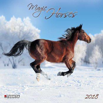 Calendar 2018 Magic Horses