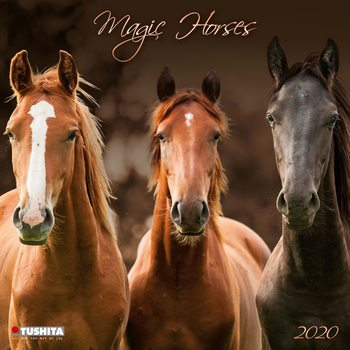 Calendar 2020  Magic Horses
