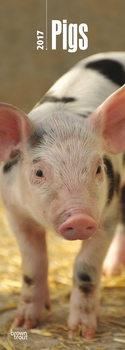 Calendar 2017 Pigs
