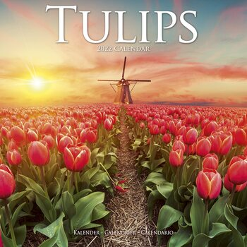 Calendar 2022 Tulips