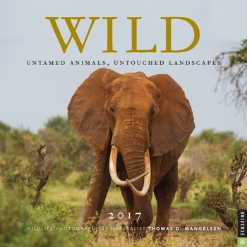 Calendar 2017 Wild Nature