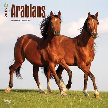 Arabe Calendrier 2017