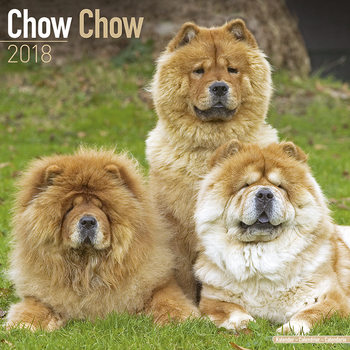 Chow Chow Calendrier 2018