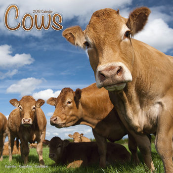 Cows Calendrier 2018
