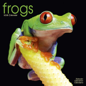 Frogs Calendrier 2018