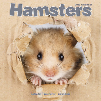 Hamsters Calendrier 2018
