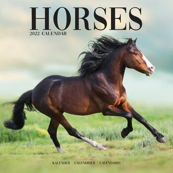 Horses Calendrier 2022