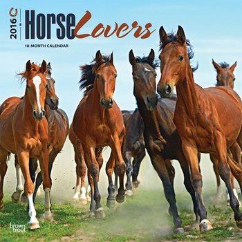Le cheval Calendrier 2017