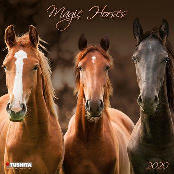 Magic Horses Calendrier 2020