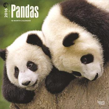 Pandas Calendrier 2017