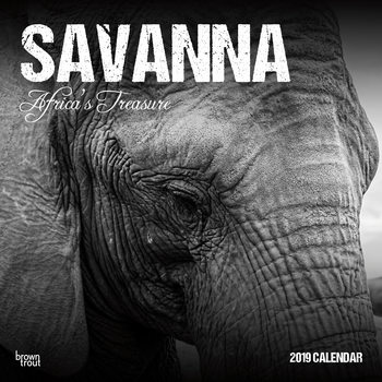 Savanna - Africas Treasure Calendrier 2019