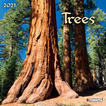 Trees Calendrier 2021