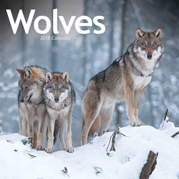 Wolves Calendrier 2018