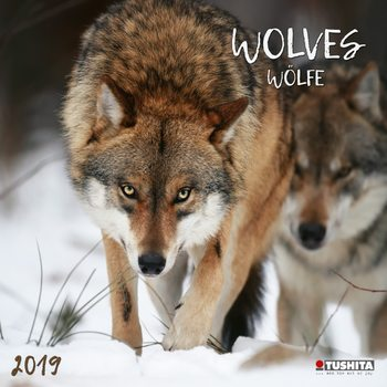 Wolves Calendrier 2019
