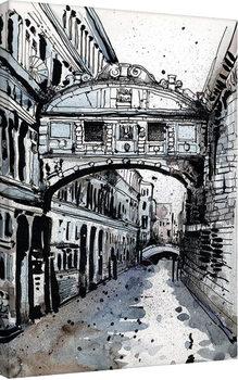 Obraz na plátne Jack the Flipper - Venice IV