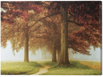 Lars Van De Goor - The Apostles Canvas