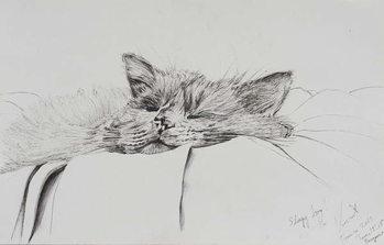 Canvas Monty sleepy boy, 2013,