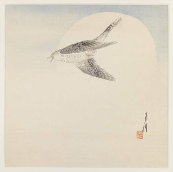 Canvas Nightingale Flying by Moon
