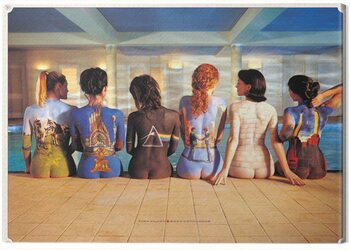 Obraz na plátne Pink Floyd - Back Catalogue