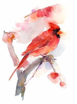 Canvas Red cardinal, 2016,