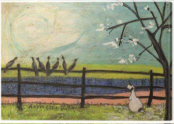 Obraz na plátne Sam Toft - Doris and the Birdies