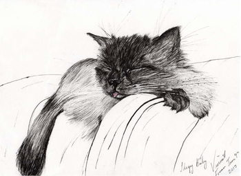 Canvas Sleepy Baby, 2013,