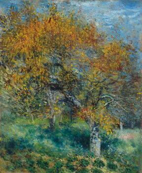 Canvas The Pear Tree; Le Poirier, c.1870