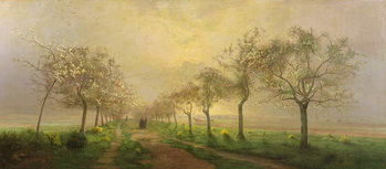Apple Trees and Broom in Flower Canvas