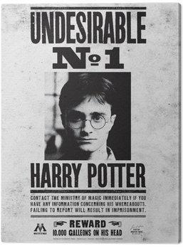 Obraz na plátne Harry Potter - Undesirable No.1