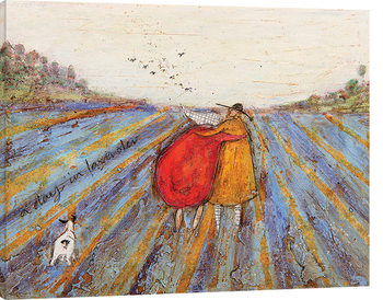 Sam Toft - A Day in Lavender Canvas