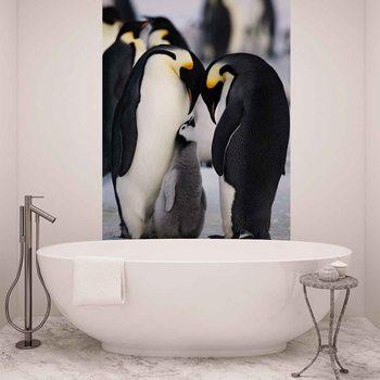 Carta da parati Animali Pinguino