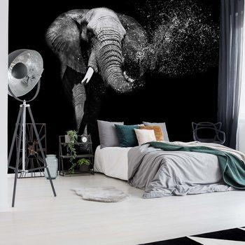 Carta da parati Black And White Elephant