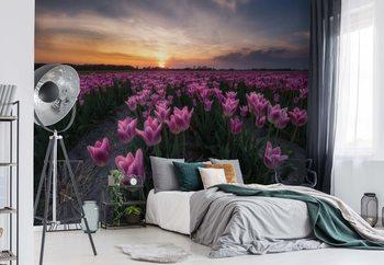 Carta da parati Field Of Tulips
