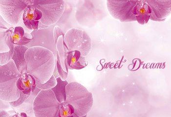 Carta da parati Fiori Orchidee Rosa