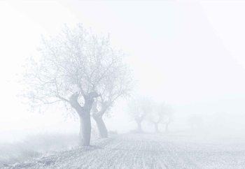 Carta da parati Foggy Sunday