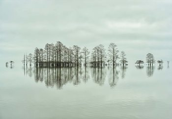 Carta da parati Lake-Shore Lineup Beauty