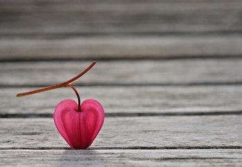 Carta da parati Natural Heart