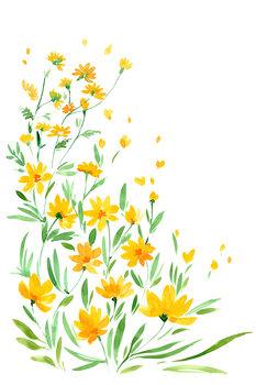 Carta da parati Yellow watercolor wildflowers