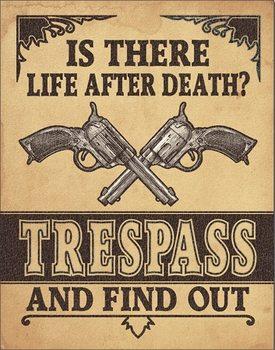 Life After Death? Carteles de chapa