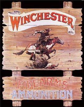 Cartelli Pubblicitari in Metallo WIN - express rider