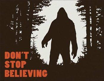 Cartello in metallo Don't Stop Believing