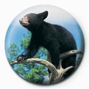 Chapitas BEAR CUB