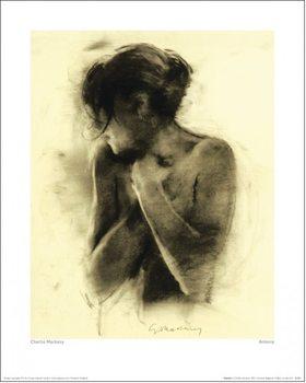 Charlie Mackesy - Antonia Festmény reprodukció